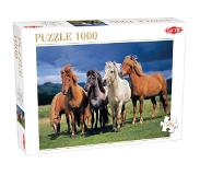 Tactic Puslespil Camargue horses