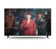 "Panasonic TX-49FX613E LED-televisio 124,5 cm (49"") 4K Ultra HD Smart TV Wi-Fi Hopea"
