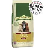 James Wellbeloved Adult Large Breed Lamb & Rice - 15 kg