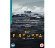 Dvd Fire At Sea (DVD)