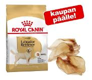 Royal Canin Labrador Retriever Sterilised 12000g Aikuinen Siipikarja, Riisi