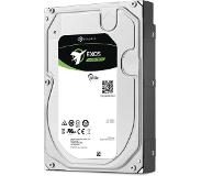 Seagate Exos 7E8 Enterprise Capacity 4Tb Hdd 7200Rpm Sata 12Gb/S 256Mb Cache 3.5Inch 24X7 512Native Secure Blk