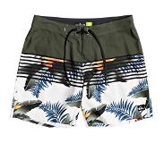 Quiksilver Everyday Lightning 17 Boardshorts kalamata Koko 30
