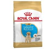 Royal Canin Canine Labrador Retriever Junior/Puppy Dry 12kg