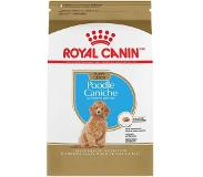 Royal Canin Canine Poodle Junior/Puppy Dry 3kg