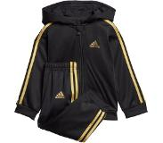 adidas Shiny Hooded Track Suit