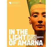 Book In the Light of Amarna: 100 Years of the Nefertiti Discovery