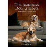 Book The American Dog at Home