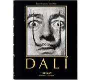 Book Salvador Dali. The Paintings