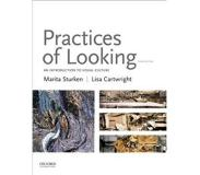Book Practices of Looking: An Introduction to Visual Culture